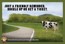 buckle up or get a ticket image