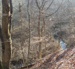 Spring Valley Nature Preserve