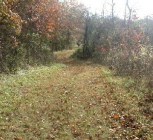 Taft Trail