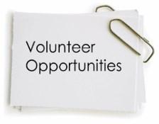 Volunteer Opportunities image