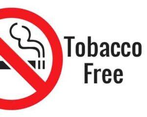 Tobacco-free
